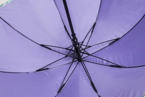 Uber Walker Umbrella interior